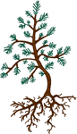 Budding Pine Tree and Roots Embroidery Design